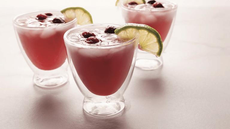 Mock Cranberry-Lime Spritzer